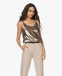 Drykorn Isalie Sequins Top - Taupe