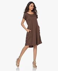 LaSalle Straight Stretch Cotton Dress - Choco